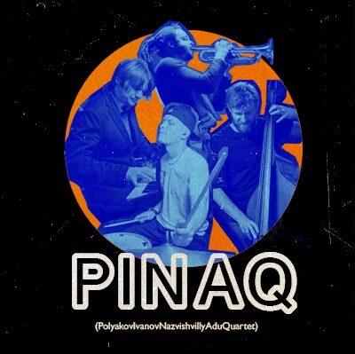 pinaq_400x400_result